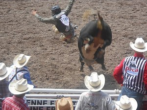 "Score this one for the bull! We caught Bart Miller airborne as he is ejected on his ride and he took a ""No Score"""