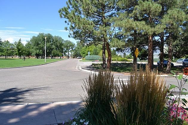 South Lions' Park Drive
