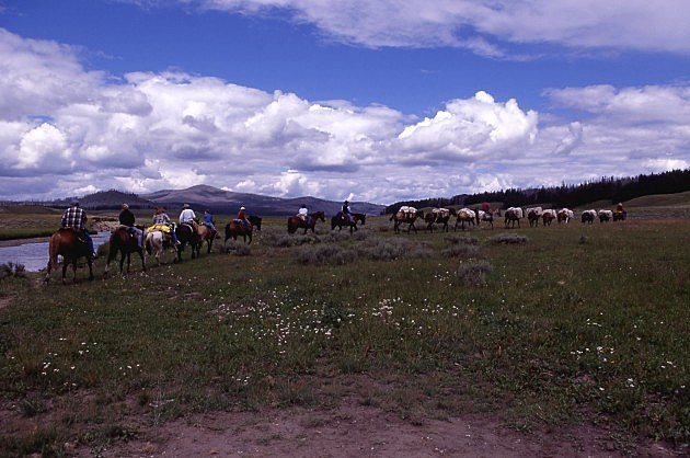 saddle tours in Yellowstone