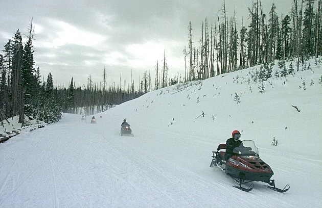 Snowmobiles in Yellowstone