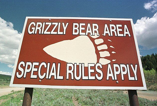 Grizzly Bear Warnings