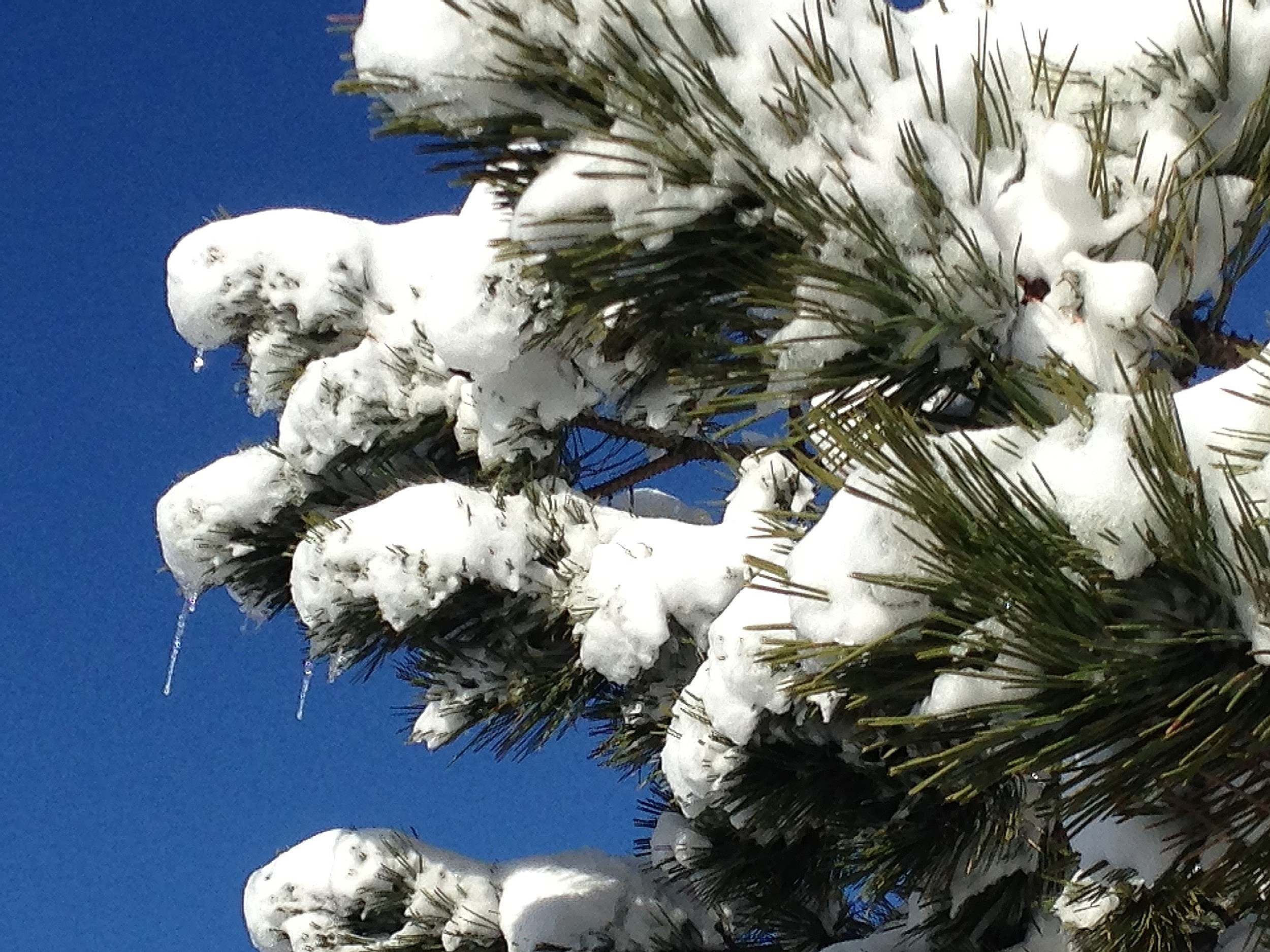 Cold Weather And Snow In Forecast For SE Wyoming   KGAB